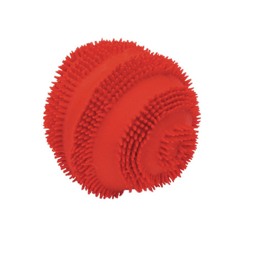 Rascals Spiney Ball Dog Toy
