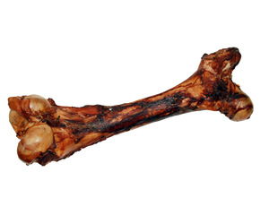 Free Range Dino Bone Dog Chew