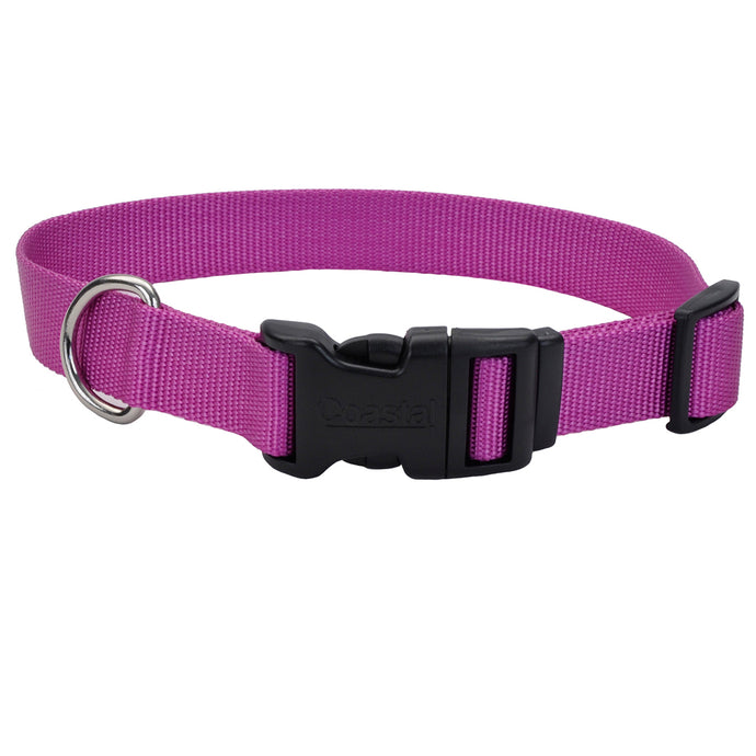 Coastal Adjustable Dog Collar Tuff Orchid