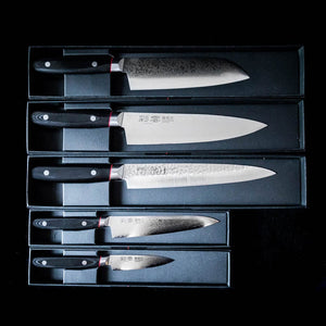 Hand Forged Japanese Chef Knife 210mm Pro-J
