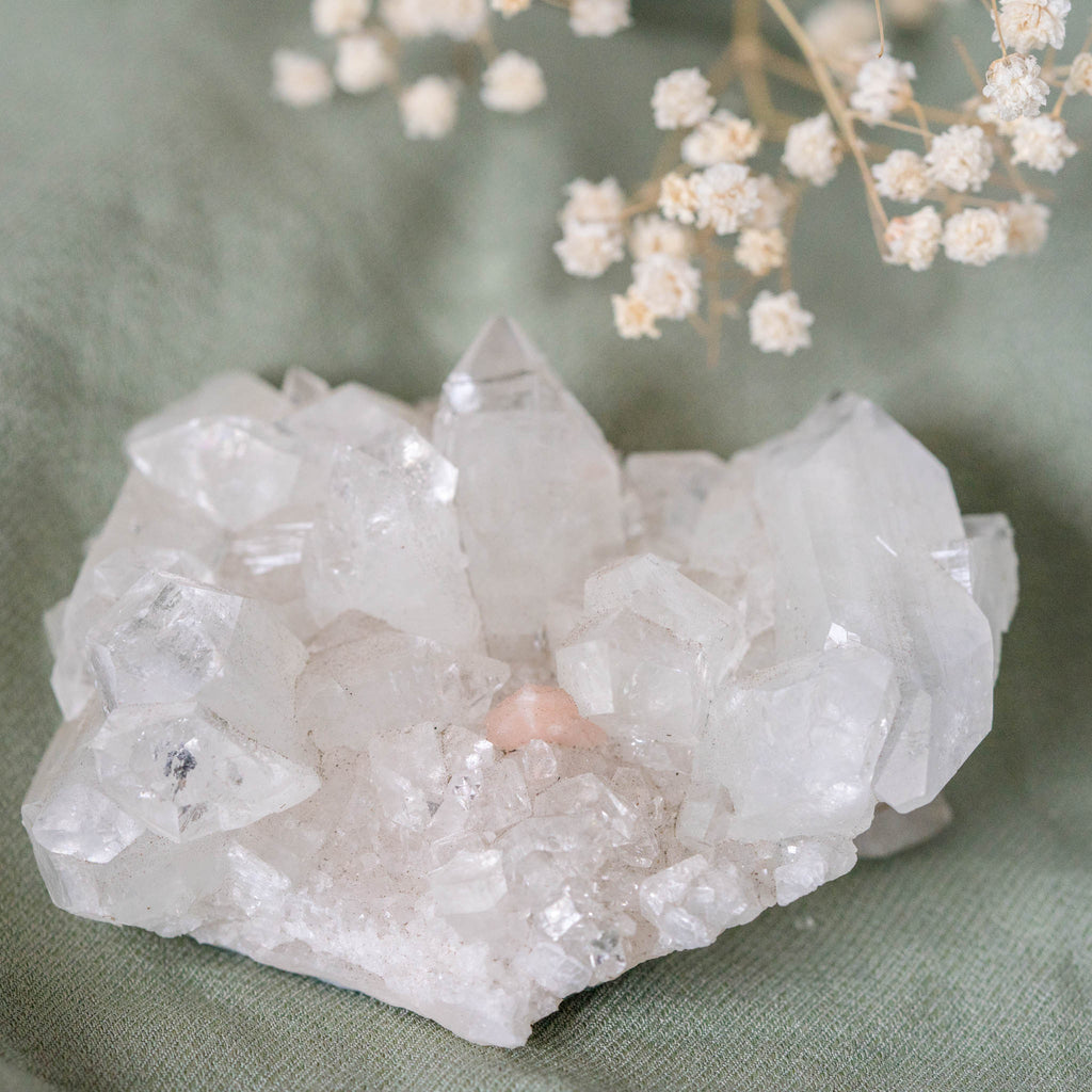 Clear Apophyllite Zeolite Crystal Cluster- Peach Dimple-Crystals-House of Alchemy