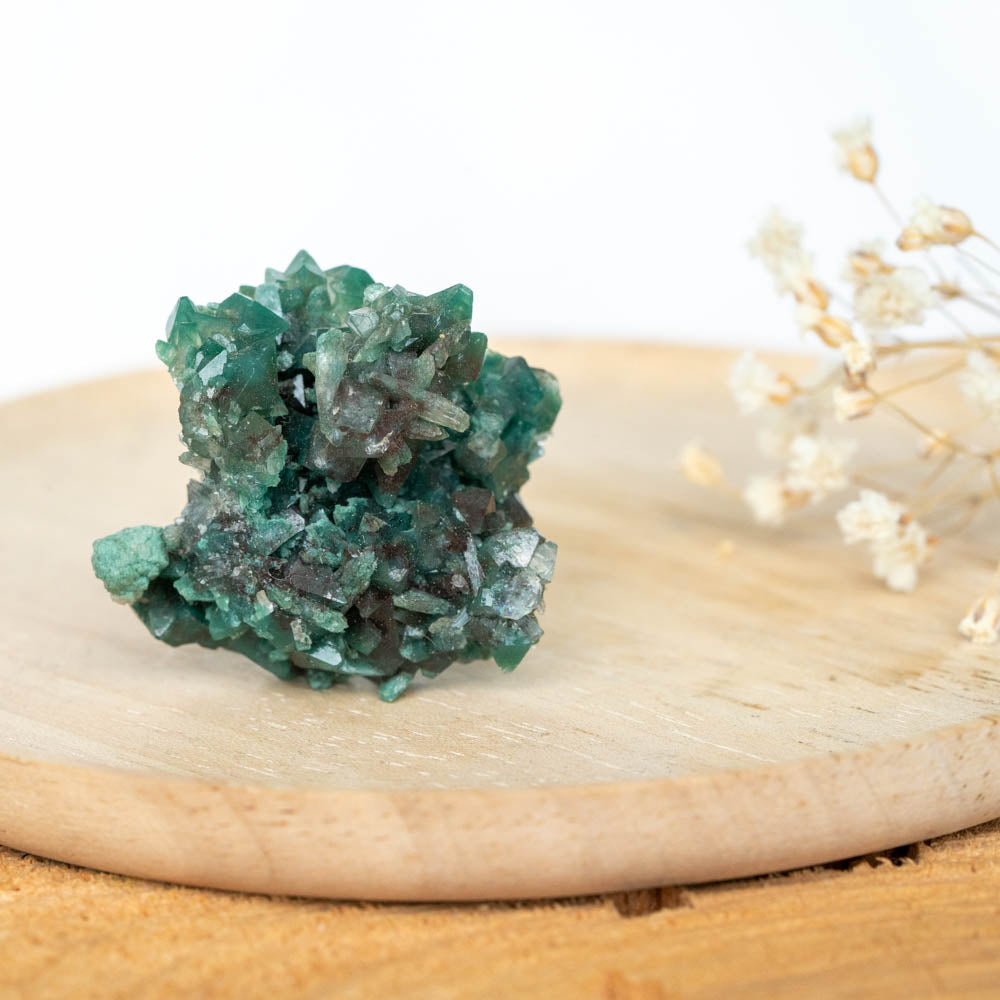 Paradox - Dark Green Apophyllite + Green Stilbite + Green Heulandite-House of Alchemy