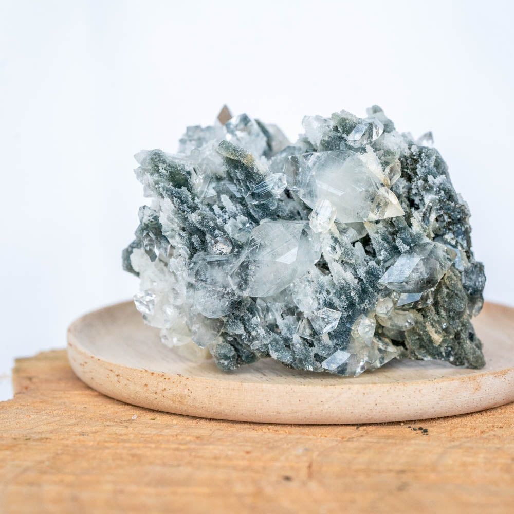 Nebula - Deep Blue Chalcedony Coral with Clear Apophyllite