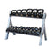 Body Solid 2 Tier Reversible Dumbbell And Kettlebell Rack -GDKR100