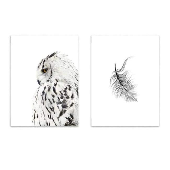 Owls & Feathers - 20X30 Cm (8X12 Inches) / Combo 1