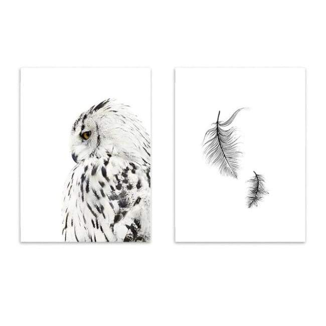 Owls & Feathers - 20X30 Cm (8X12 Inches) / Combo 2