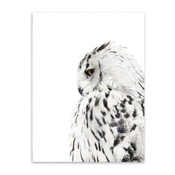 Owls & Feathers - 20X30 Cm (8X12 Inches) / Owl
