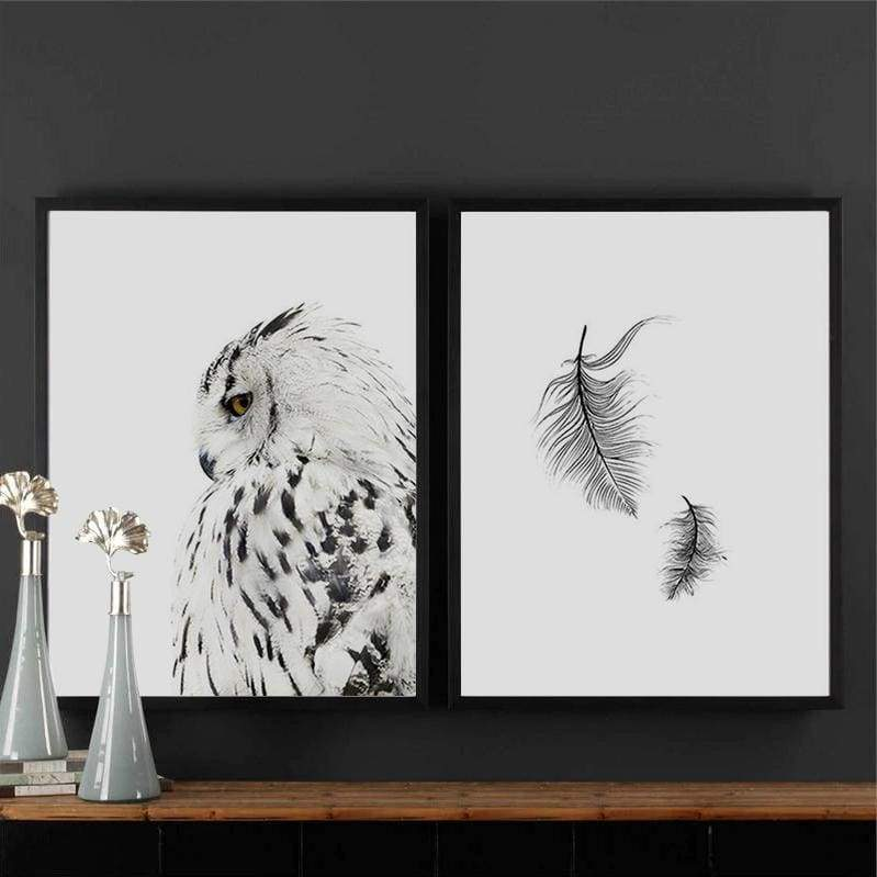 Owls & Feathers
