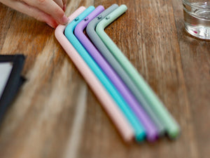 Reusable Silicone Straws Pastel 5 Pack | Soft Straws