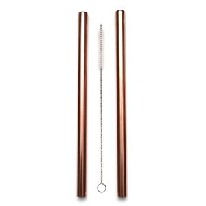 Smoothie Straw Rose Gold - 2 Pack