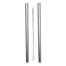 Smoothie Straw Silver - 2 Pack