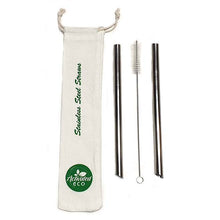 Stainless Steel Tea Straw Kit