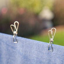 Twin Pack Clothes Pegs Silver