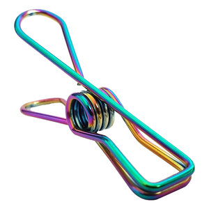 Rainbow Stainless Steel Infinity Clothes Pegs