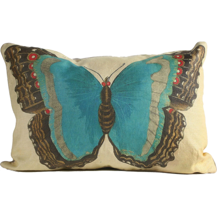 Aqua and Brown Butterfly Pillow
