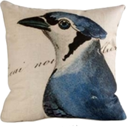 Blue Jay Pillow