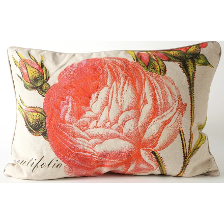Cabbage Rose Pillow