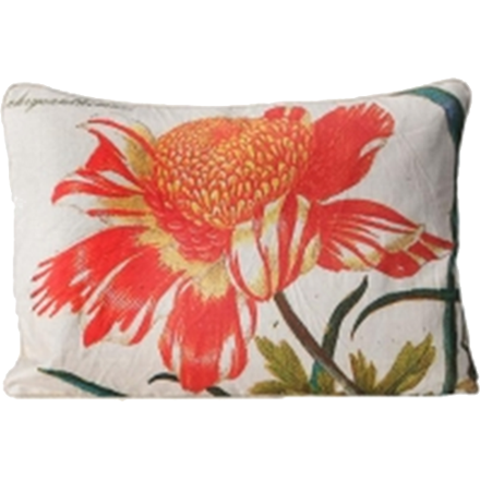 Crysanthemum Pillow