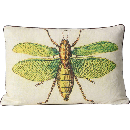 Green Moth Pillow