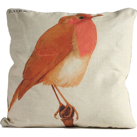 Robin Pillow