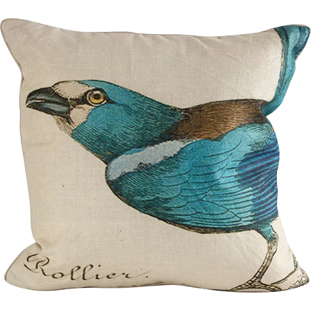 Tuquoise Bird Pillow