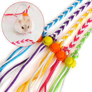 2TRIDENTS 2 PCS Small Animal Harness and Leash for Rats Ferret Mouse Squirrel Small Animal (Random Color)