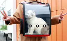 Load image into Gallery viewer, 2TRIDENTS Transparent Breathable Pet Carrier Backpack - Designed for Travel, Hiking, Walking & Outdoor Use (Black)