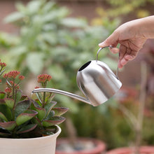 Load image into Gallery viewer, 2TRIDENTS Stainless Steel Watering Pot with Long Mouth Perfect for Plant Flower Watering Home Office Decor