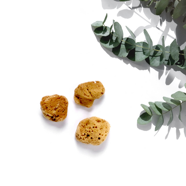 Natural Sea Sponge: Set of Three