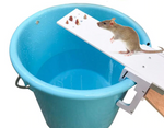 The Most Effective Mouse Trap