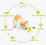 Cat Toy 5-in-1   ( Free Shipping  )
