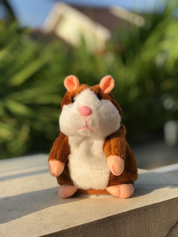 I Can Talk  ( Unique Gift )