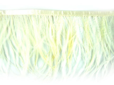10 YDS - Ostrich Feather Trim 6 Inch Long in Ivory - B-1139-24