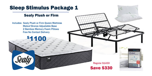 Sleep Stimulus Package 1 - Sealy Plush or Firm Queen Mattress