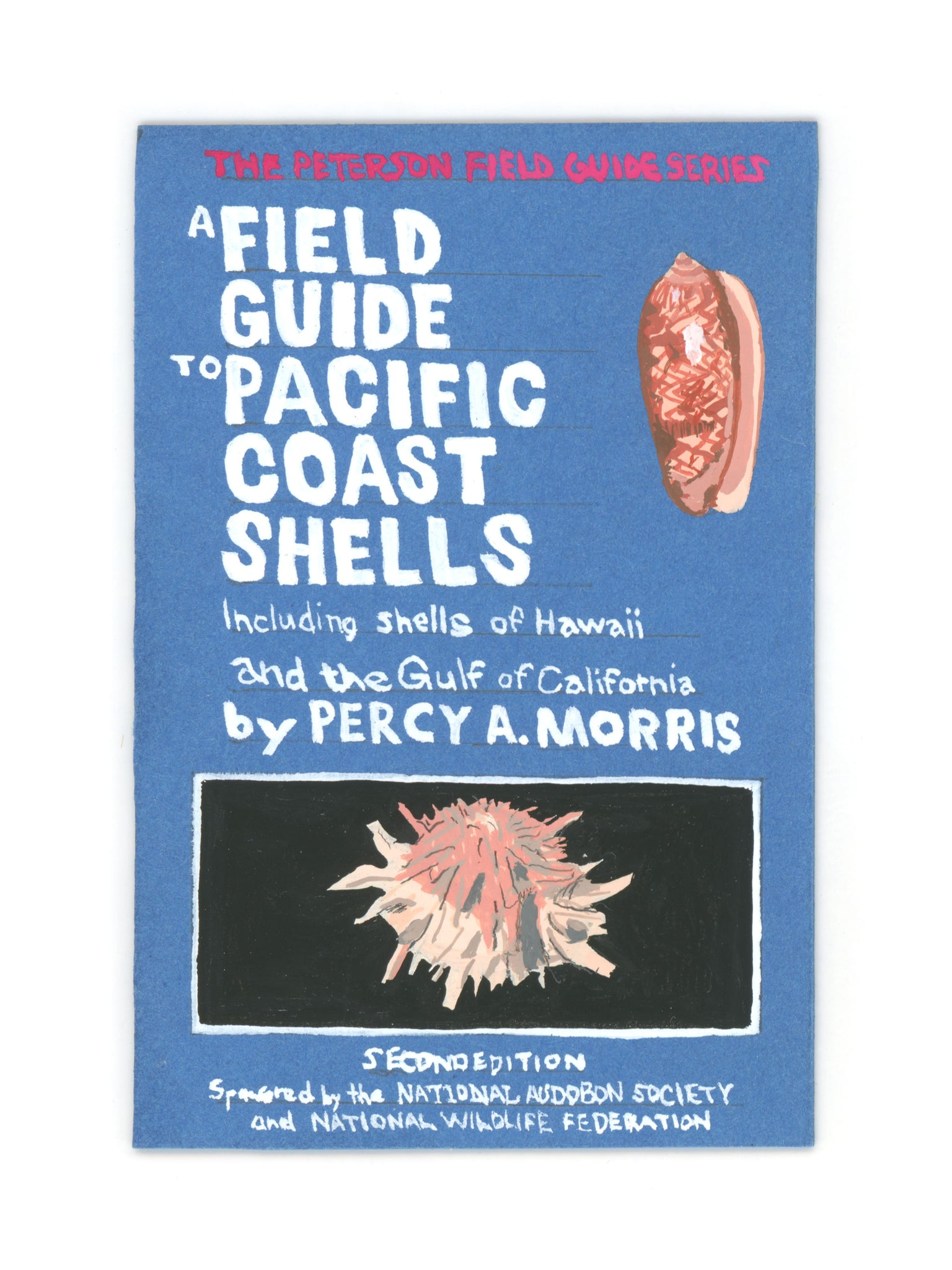 Orion Shepherd - Field Guide To Pacific Coast Shells