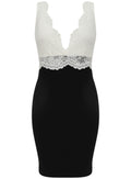 Ladies V Neck Lace Detail Bodycon Party Dress