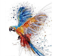 The Parrot (Painting by Numbers)