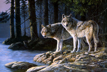 Wolves in the forest (Painting by Numbers)