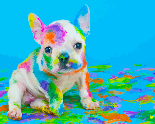 Colourful puppy dog (Painting by Numbers)