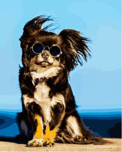 Hipster dog (Painting by Numbers)