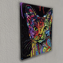 The colorful cat (Painting by Numbers)