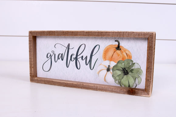 Grateful Shelf Sitter