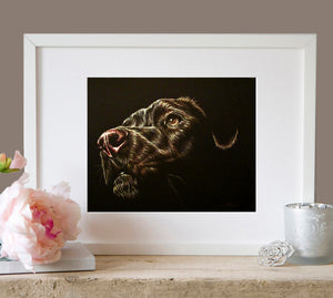 Fine Art Print: Black Dog Drawing