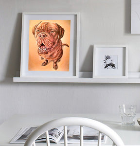 Fine Art Print: Mastiff Dog Drawing