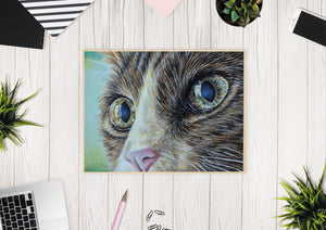 Fine Art Print: Cat Close Up Portrait