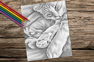 Adult Coloring Pages - Set of Coloring Sheets with Grayscale Cats, Set #9, , ArtistrybyLisaMarie