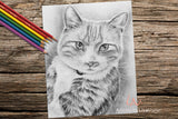 Adult Coloring Pages - Set of Coloring Sheets with Grayscale Cats, Set #20, , ArtistrybyLisaMarie