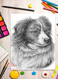 Printable Coloring Page: Collie Dog in Grayscale