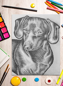 Printable Coloring Page: Dachshund In Grayscale