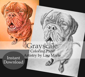 Printable Coloring Page: Mastiff Dog in Grayscale, , ArtistrybyLisaMarie